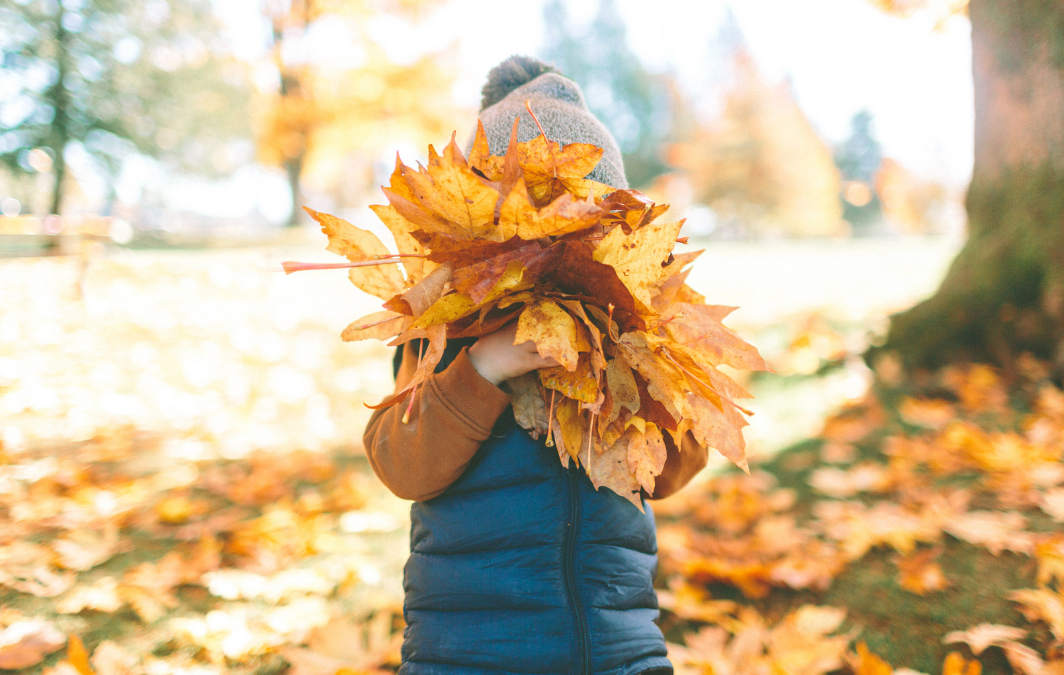 3 Tips for An Autumn Health Reset