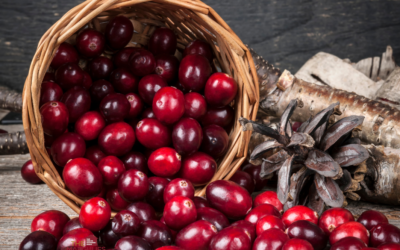 Delicious Ways To Enjoy Fresh Cranberries